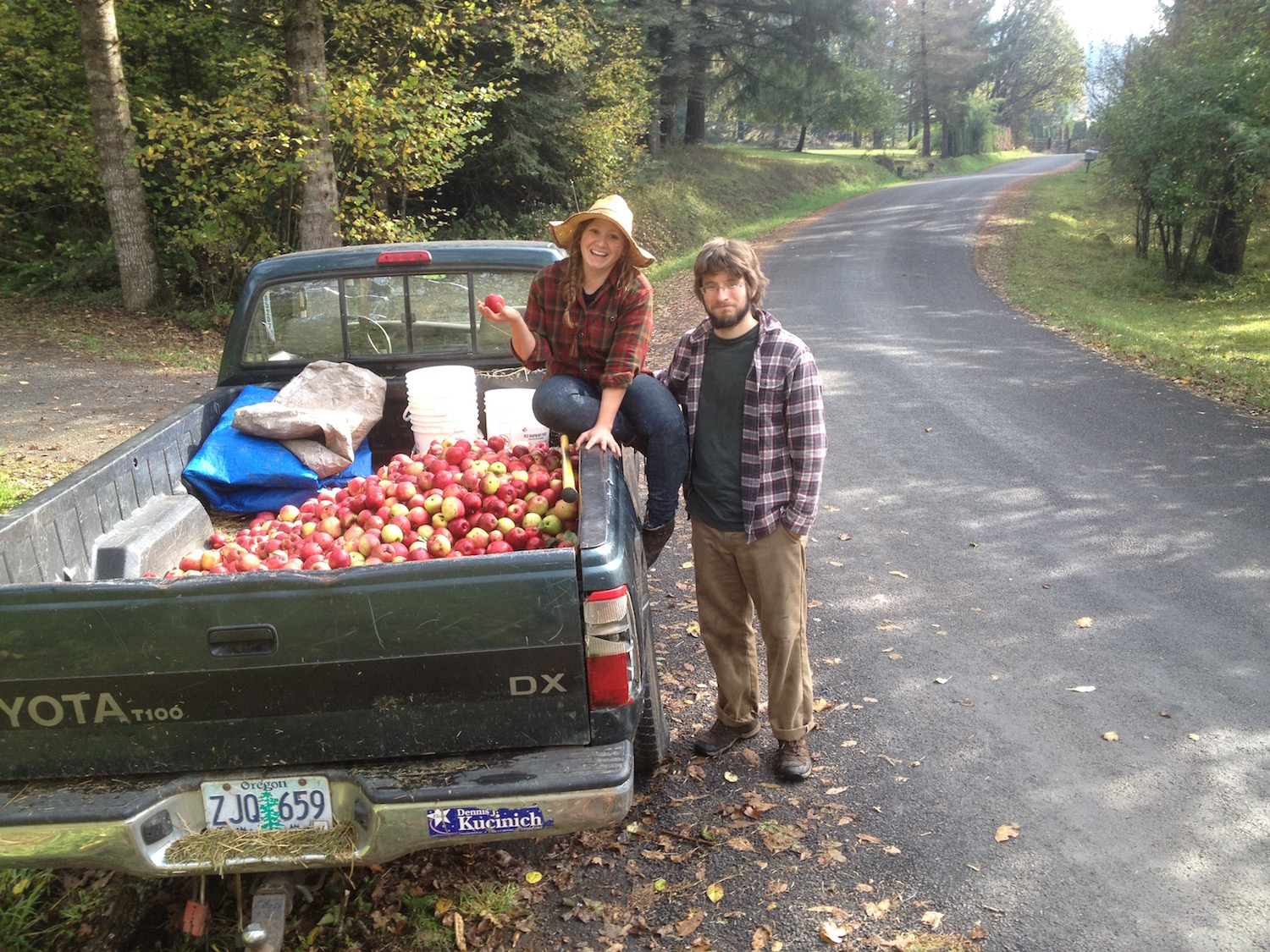 Gathering Apples for the Harvest Fair